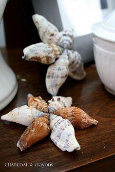 seashell star tutorial