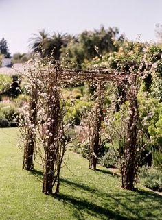 cherri, wedding ideas, grand entrance, wedding arches, branch, winter weddings, wedding arbors, outdoor weddings, cherry blossoms
