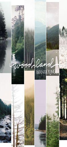 Woodland wanderings -via COCO / MINGO