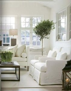 Like the white, the light, and the tree!
