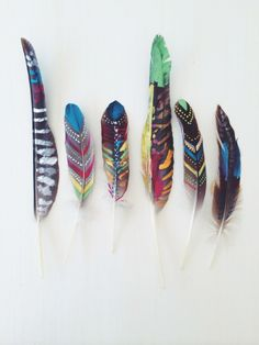 painted found feathers by Kirsten Rickert & Family
