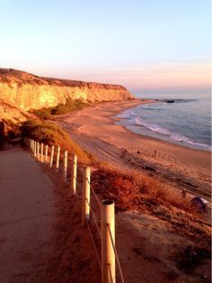 Our favorite place to take a walk, the beach! #readypac #fit&fresh