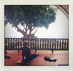 Konalani Yoga Ashram Hawaii
