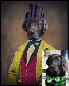 Custom Dog Portraits - by The Lonely Pixel Photography, $65.00