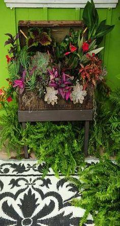 Re-purposed Antique Traveling Chest Garden Planter