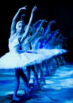 English National Ballet, Swan Lake | [via 24.media.tumblr]