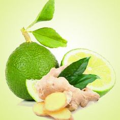Ginger Lime Fragranc