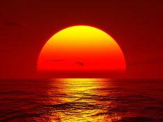 sunshine lights, natur wonder, natur video, sunsets, sunris, orang sun, beauti, build background, background knowledg