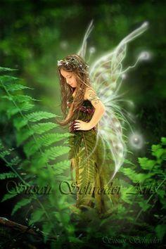 Resting in the Ferns  11x14 Fantasy Fairy Photo Art Print. $15.00, via Etsy.