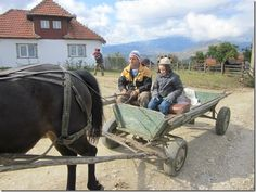 Learn about Transylvania!
