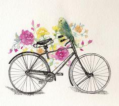 Bike & a budgie.