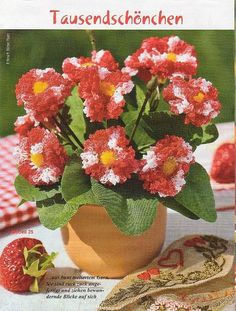 цветы - naslen - Photo.Qip.ru / id: fvax
