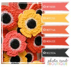 Photographer Templates by Photo Card Boutique | - Page 15