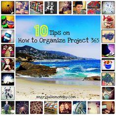 10 Tips to Organize a Project 365 dyi organ, photographyrandom posesidea, organ idea, project365, photo a day, organ project, project 365, new years, 365 photo