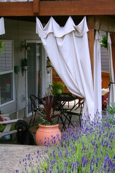 drop cloth outdoor curtains