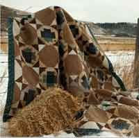 Big Sky Quilt Pattern. http://www.kayewood.com/item/Big_Sky_Quilt_Pattern/2618 $12.00