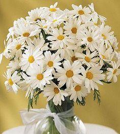 Google Image Result for http://photos.weddingbycolor-nocookie.com/p000002980-m3124-p-photo-8633/Pink-Wedding-Flowers-Just-Ideas.jpg