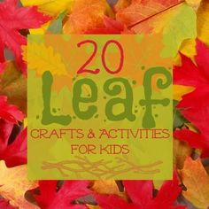 20 Leaf Crafts and Activities for Kids