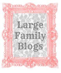 Seven Cherubs: 5 Large Family Blogs