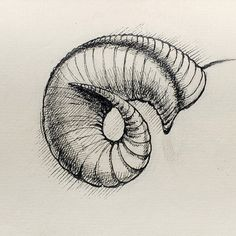 "Saatchi Online Artist dario moschetta; Drawing, ""Toot!"" #art"