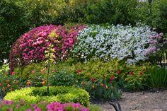 Design Ideas From A Layered Garden in Atlanta --> http://www.hgtvgardens.com/gardens/plant-a-sentimental-garden?soc=pinterest&s=1