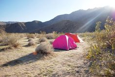 Camping 101: San Diego-area campsites for every degree of nature lover, from glamping enthusiasts to tree-huggers