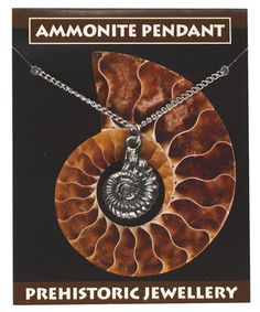 Ammonite pendant a super fossil related gift from Everything Dinosaur.  An antiqued finished Ammonite pendant from £1.59 plus postage.