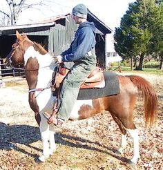 REDUCED BROKE PAINT PONY *** - $166 (Science Hill, KY)