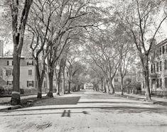 "Salem, Massachusetts, circa 1906. ""Chestnut Street."""