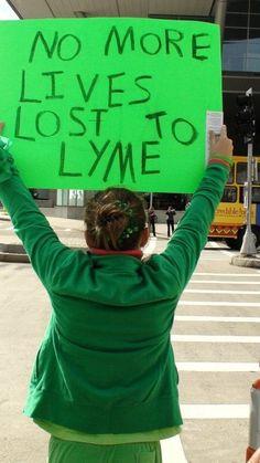 The Lyme Disease