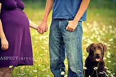 maternity photo with the pets is a must