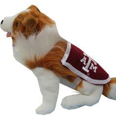 Reveille - Texas A Mascot