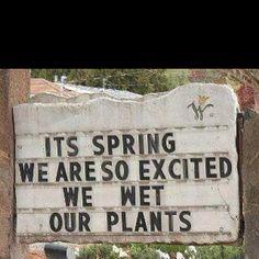 Love a good pun...