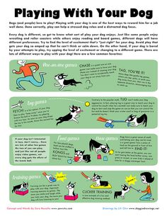 Playing With Your Dog, via Flickr.
