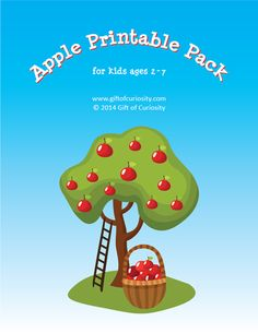 Apple Printable Pack - This free pack contains 73 apple-themed activities for kids ages 2-7. The activities cover a range of skills, including shapes and sizes, colors, same vs. different, patterning, puzzles, fine motor, math (number identification, counting, addition, subtraction), and literacy (letter identification, alphabetical order, phonemic awareness, word searches). #apples #freeprintables || Gift of Curiosity