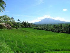Indonesia, Tanah Airku
