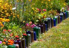 Bottle Border  I did this in my backyard  by the grapevine and it looks awesome...I just wish the flowers would grow in nice like they are here
