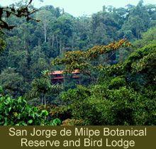 San Jorge  de Milpe  Botanical Reserve and Bird  Lodge - favorite place I stayed in Ecuador.