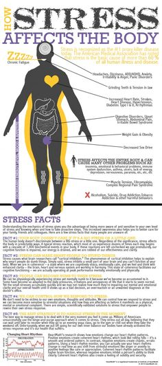 stress and how it affects the body