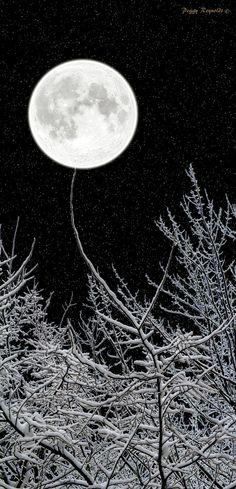 Full Moon. S)