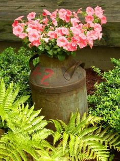 A hanging basket of Petunias places inside an old milk can.More unique planter ideas to make your own country garden at www.whatsurhomestory.com