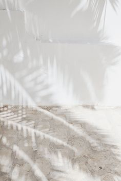 Made in the shade. #TiffanyPinterest #shadow #palmleaves #silver