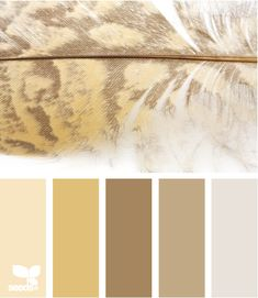 feather tints. Such a beautiful color story for a sitting room or guest bedroom.