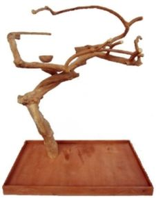 Java Wood Tree Parrot Play Stand Medium Single
