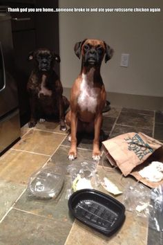 """""""Thank God you are home. Someone broke in and ate your rotisserie chicken again."""""""