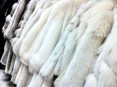 fur fur fur fur fur