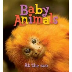 Baby Animals At the Zoo by Kingfisher