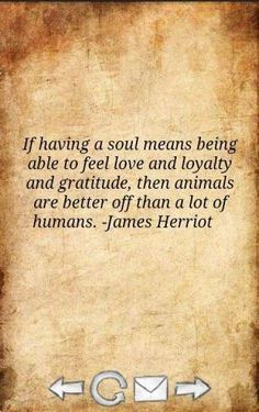 Well said Dr. Herriot!
