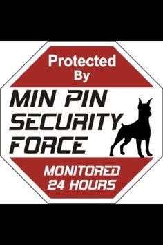 Min Pin Security