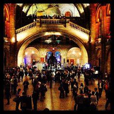 samlouclark Real life 'Night in the Museum' eeeek! @NHM_London #SU2013